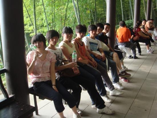 Tea Mountain Bamboo Sea: 咱们同行的伙伴们,是10年高中毕业了
