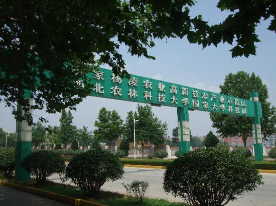 Xi'an Yangling Agricultural Demonstration Center: C:\fakepath\DSCF4673