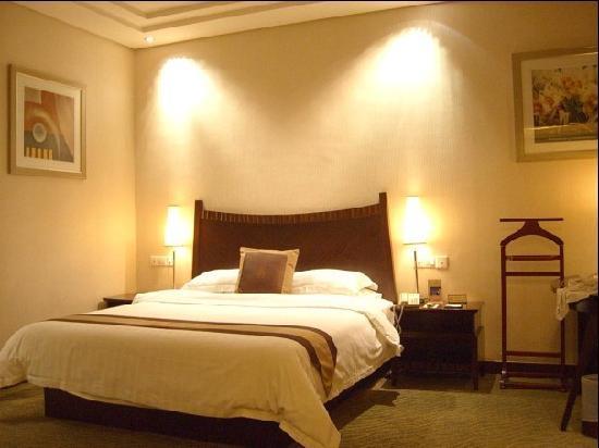 Boyue International Hotel Dongguan Houjie Wanda Plaza: 豪华单人房