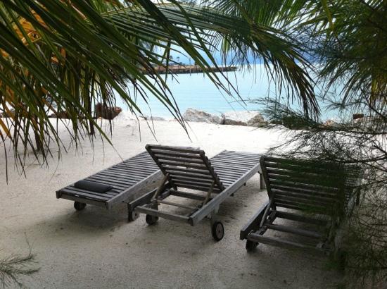 Senari Bay Resort: 远眺海湾