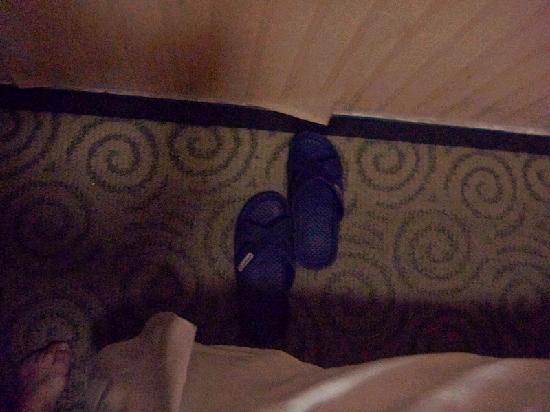 Gelin Hotel : p2二、除了床,留下得空间只有一只半鞋子的宽度;霉点斑斑的墙纸;