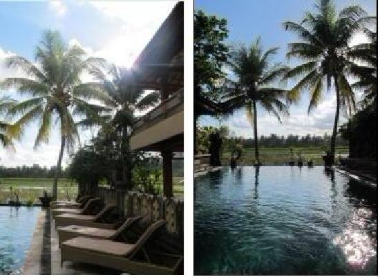 Green Field Hotel and Bungalows: 9泳池