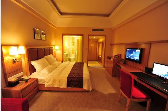 Wanyuan International Hotel: 豪华标单