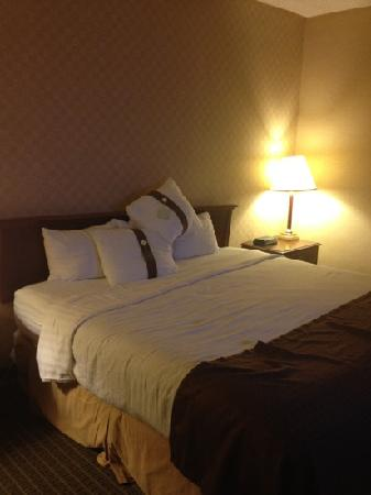 Holiday Inn Washington-Dulles Int'l Airport: 大床