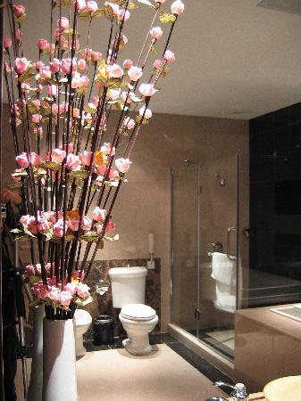Eden Plaza Hotel: 洗浴间