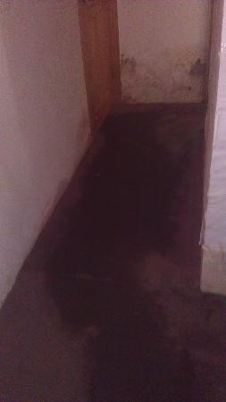 Zicheng Yaju: 地毯被水浸泡