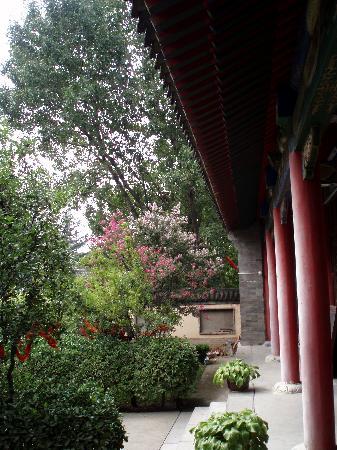 Wuzhen Temple Scenic Resort: C:\fakepath\P8215677