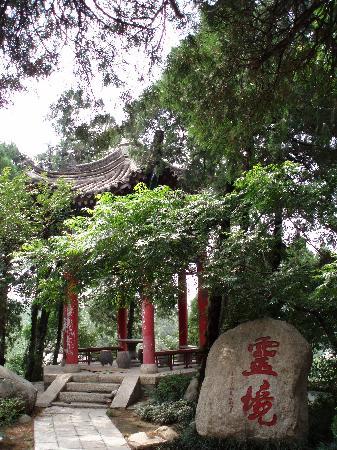 Wuzhen Temple Scenic Resort: C:\fakepath\P8215667