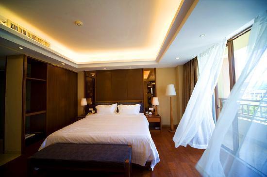 Yiyuan Xuanyu Hotel: 豪华套房1