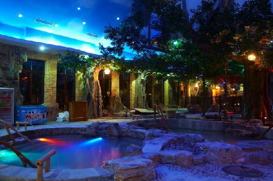 Jingzhihu Holiday Hotel: 室内汤泉