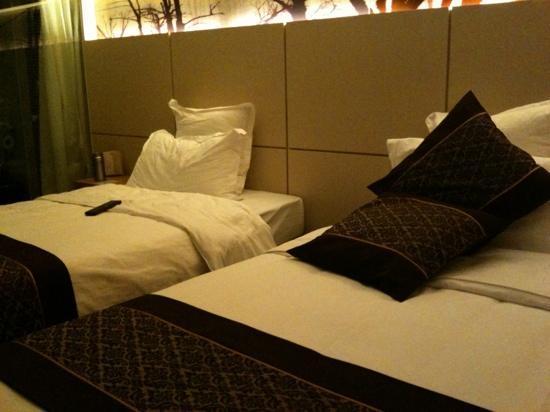Yangtze Hotel : 客房