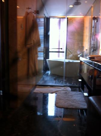 JW Marriott Hotel Shenzhen: 卫生间很赞