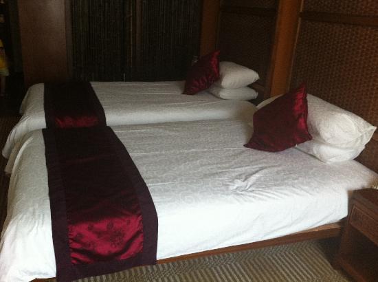 Scholars Shushan Hotspring Resort: 两个1米2的床