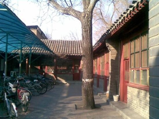 Cong's Hutong Courtyard Hotel: 院里