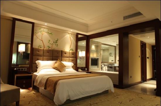 Tianlong International Hotel: 商务单间