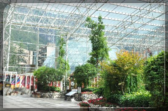 InterContinental Resort Jiuzhai Paradise: 48