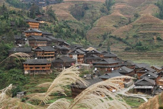 Dragon's Backbone Rice Terraces: 羑