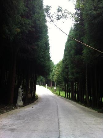 Fuling Shijiagou Scenic Spot