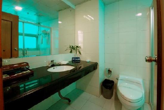 Hongjiang Grand Hotel : 卫生间