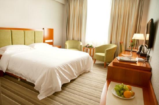 Wuyue Hotel Lin'an: 大床房