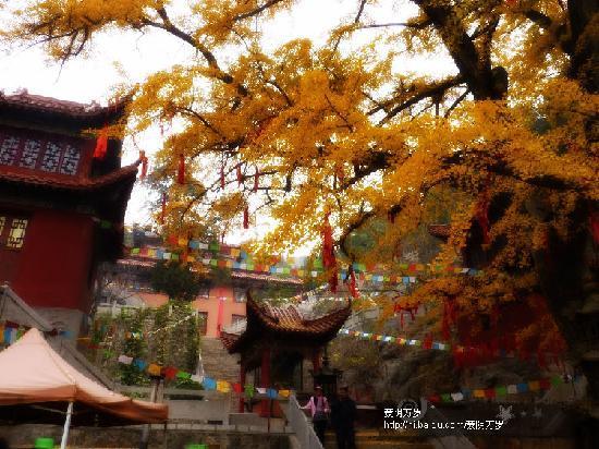 Xujiaya Celestials Cave: 松柏庵