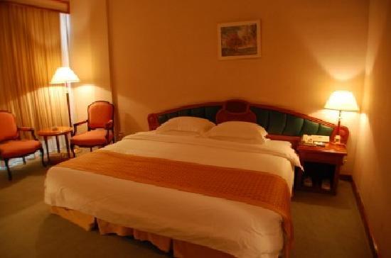 Mingyuan Xindu Hotel: 豪华单人间