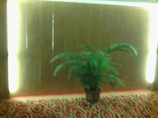 Wanyuan International Hotel: IMG_20121011_102445