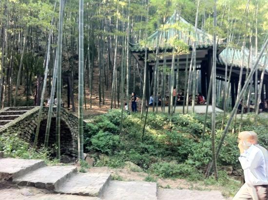 Yixing Zhuhai : 竹林之中的竹亭,小憩,悠然。