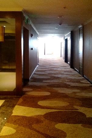 Taoyuan Guoji Hotel: 重新装修了的副楼的通道。