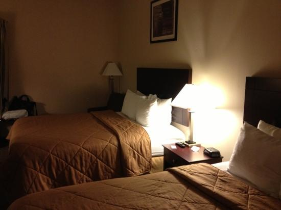 Comfort Inn O'Hare: 房间内情景