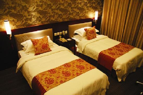 Oceanwide Hotel : 酒店客房