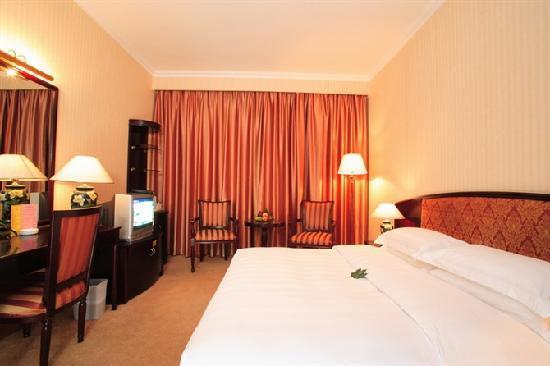 Jin Hua Hotel: 豪华单人间
