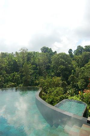 هانجينج جاردنز أوبود: 美丽的泳池 