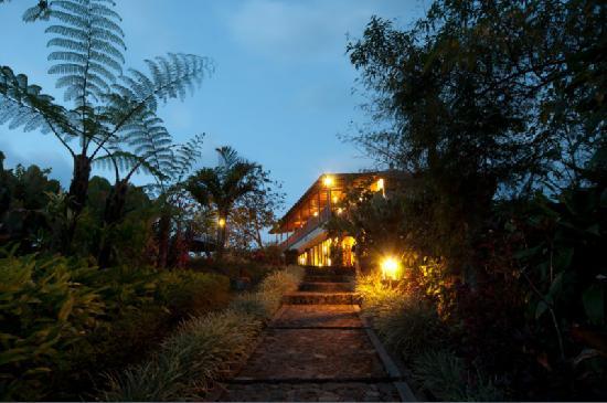Munduk Moding Plantation: 8