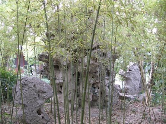 Qiuxiapu Park : 山石
