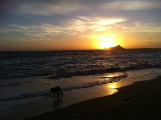 Hale 'Nalo Beach Rentals: 日出