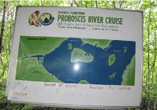 Semporna Proboscis River Cruise: 6