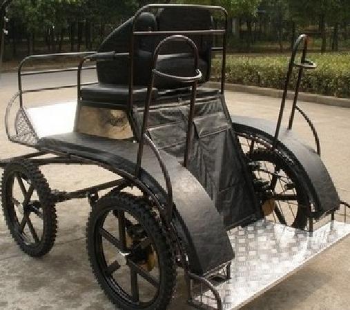 NASCAR Go Cart Track: 马车