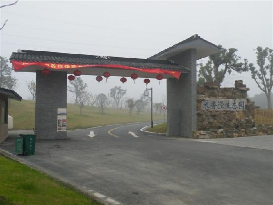 Caixiangjing Ecologically Friendly Park