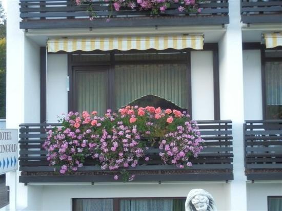 Hotel Rheingold : 窗外