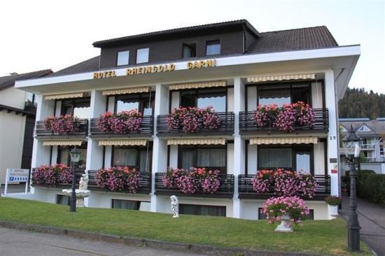 Hotel Rheingold : 外面草坪