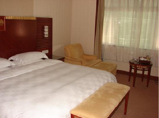 Tianfei Hot Spring Hotel: 客房