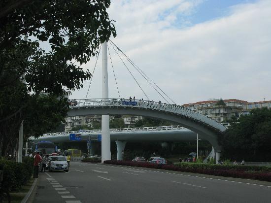 Xiada White City