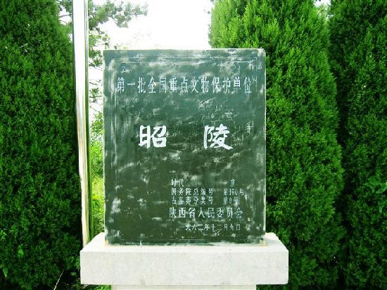 Xianyang Tangzhao Mausoleum: 风景不错