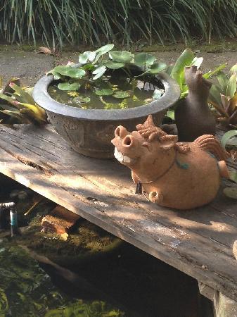 Baan Hanibah: 花园一角