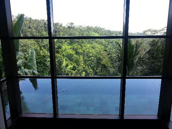 هانجينج جاردنز أوبود: 窗下私人泳池 