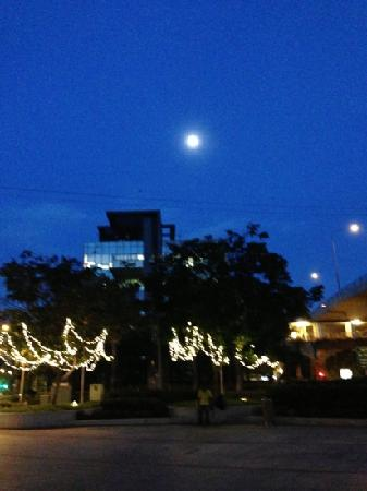 City Tours : 天蒙蒙亮的月亮
