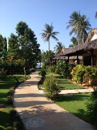Bao Quynh Bungalow: 热带风情的酒店环境