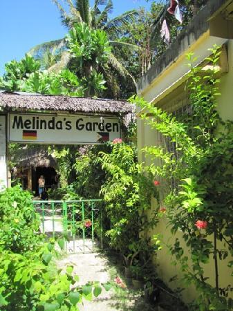 Melinda's Garden: Melinda