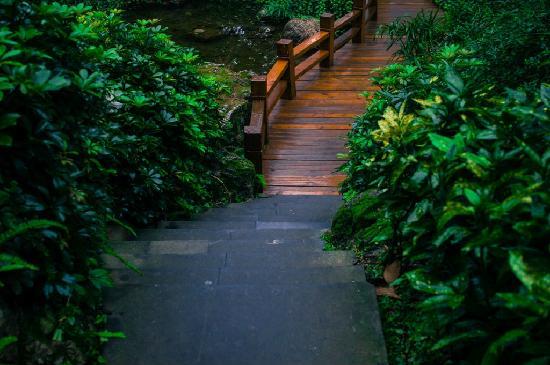 Fulejiuzhou International Hotel : 早餐餐厅外面通往山下大堂的一段小桥